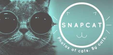 Cat Selfie-Enabling Apps - The Snapcat App Lets Kitties Take Selfies by Pawing at the Screen