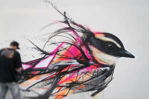 These Bird Murals by Artist L7M Depict a Wide Range of Beautiful Birds