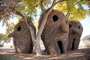 Patrick Dougherty's Public Art is Ethereally Organic