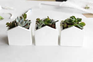 Turn a Simple Piece of Clay into a Chic Indoor Planter with This Tutorial