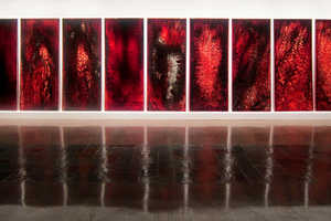The BLOOD/SPIRIT Exhibition Uses Blood to Create Surreal Patterns