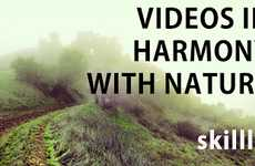 Eco Video Hosting Sites