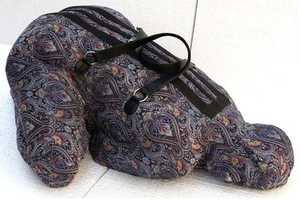 The Women Luggage by Nausheen Saeed Highlight the Plight of Many Women