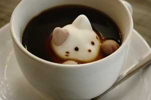 These Cute Marshmallow Cat Designs are Perfect for Hot Drinks