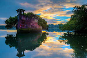 This Floating Forest is a Stunning Upcycle of an Old Abandoned Ship