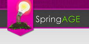 Emerging Enterprise Programs - SpringAGE Aims to Meet the Needs of Businesses in South Africa