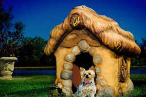 Monster City Studios Handcrafts Chic Eco-Friendly Dog Houses