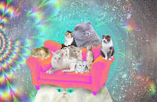 Trippy Tye-Dyed Felines - These Psychedelic Cats are Flashy and Adorable