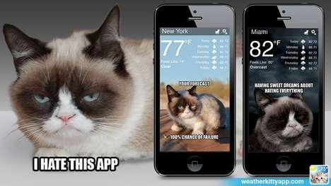 Feline Weather Forecast Apps - The 'Weather Kitty' App Uses Kitties to Illustrate Daily Forecasts