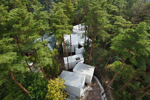 The New Forest Homes in Oyama, Japan are Built to Tree Patterns
