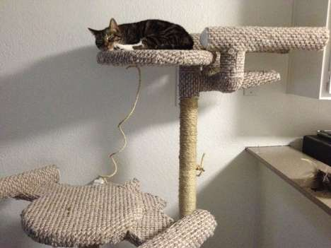 Trekkie Cat Perches - The Star Trek Cat Tree is Perfect for Geeky Pet Owners