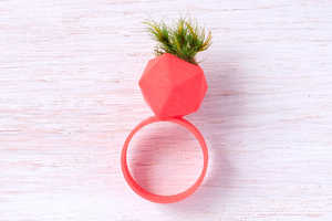Colleen Jordan's Planter Ring is a Green Reminder
