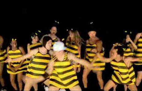 Breakdancing Honey Bees