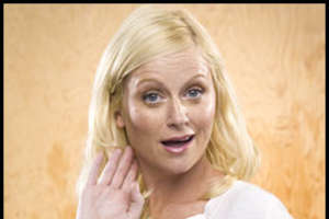 Amy Poehler on The Office
