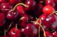 Cherry Tree Rentals - CherryAid