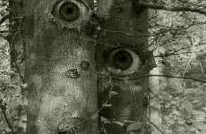 Personified Trees With Eyes
