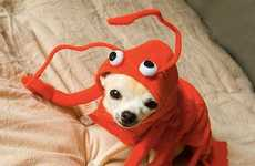 The 'Lobster Paws' Costume Turns Your Dog into a Mouthwatering Meal