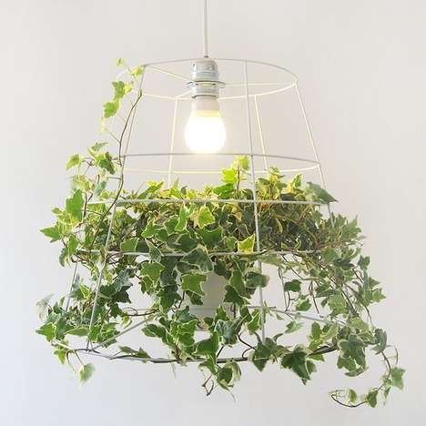 Vine-Inspired Lighting - This Vine Photosynthesis Lamp is a Natural Way to Light Your Home