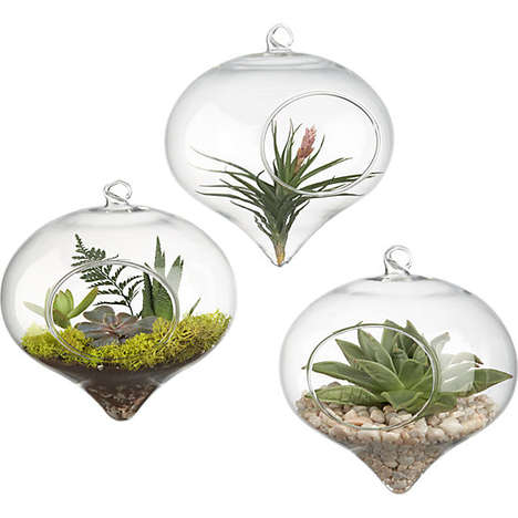 hanging glass terrarium
