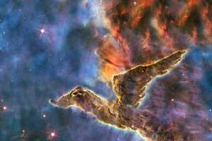 NASA's Images Look Like Space Creatures