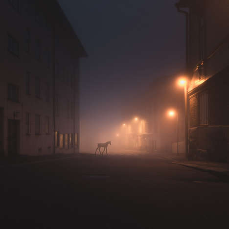Wandering Wild Animal Photography - Mikko Lagerstedt Captures Wild Animals Stalking the Night