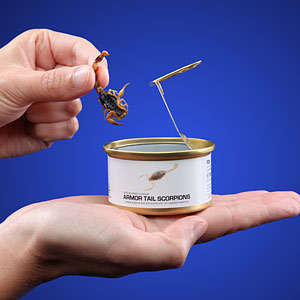 Edible Canned Bugs