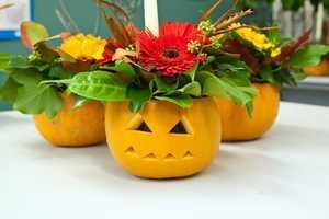 Turn Your Tiny Pumpkins into Creative Jack-O-Lantern Candles