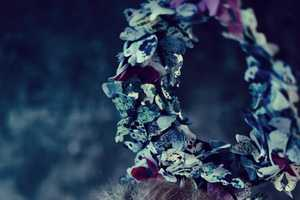 Journey Through Metamorphosis with This Raw Butterfly Fashion