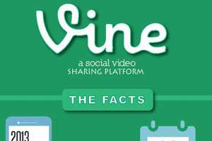 This Vine Video Guide Shares How Impactful Vine is for Brands