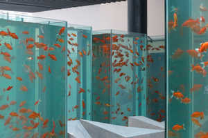 This Gallery Has Fish Aquarium Replicas of a Skyscraper Development