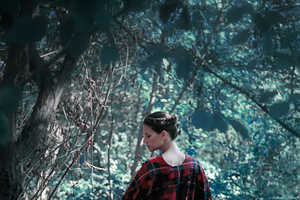 'Queen of the Forest' by Veronica P. Plays With Old Tales