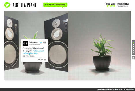 Scientific Social Media Experiments - Talk to a Plant Sees if Tweets Help a Plant Growth