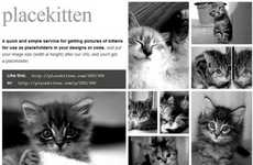 Feline Web Design Fillers