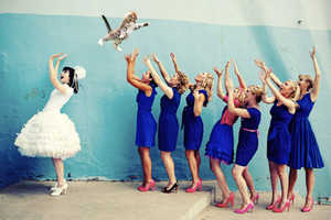 The Cat Throwing Brides Meme Turns Single Ladies into Cat Ladies
