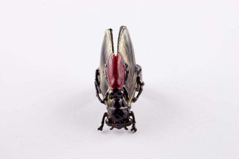 Insect-Embellished Accessories