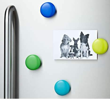 Fridge Magnet Fasteners - The Click Clips by Lulalu Can Hold Up to 10 Sheets of Paper
