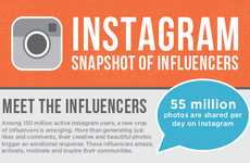 Influential Photo Sharer Infographics