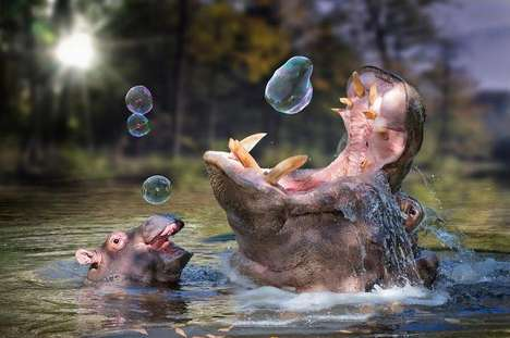 Fantastical Animal Photoshopping - John Wilhem