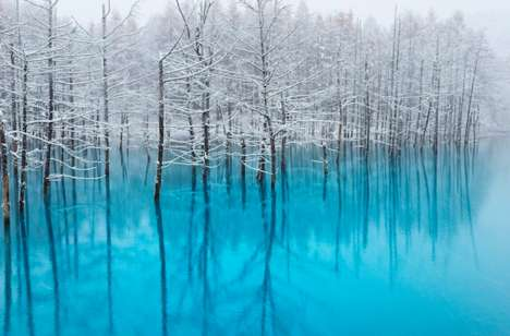 Multihued Pond Photography - Kent Shiraishi's Shots of the Bieie Blue Pond Show Off Its Beauty