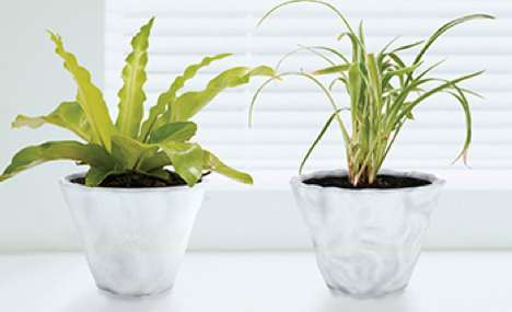 Parched Flower Pots - The Skin Pot Shrivels Up when the Plant Inside is Insufficiently Hydrated