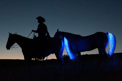Horse Tail Lights - These Attachable LED's Can Light a Horse's Tail