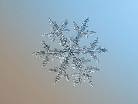 Macro Snowflake Photography - Alexey Klijatov Captures How Unique a Snowflake Really Is