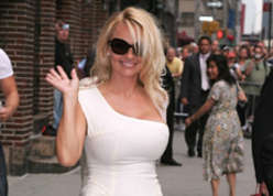 Pamela Anderson's Eco-Friendly Dubai Hotel
