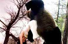 Bigfoot Parodies