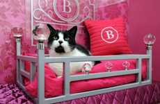 Luxurious Feline Vacations - Pamper Your Kitty with a Stay at Ings Luxury Cat Hotel