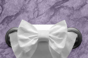 Impress Your Friends with Amazing Toilet Paper Origami