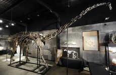 Prodigious Prehistoric Decor