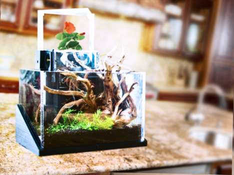 Living Desktop Ecosystems - The EcoQube is a Desktop Ecosystem That Grows Flowers and Herbs