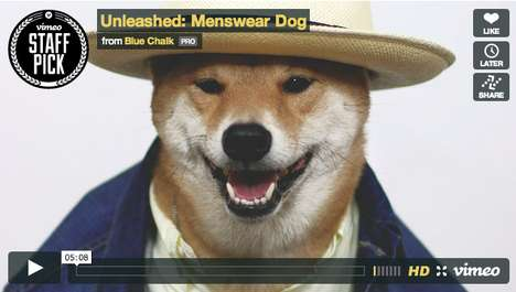 Luxury Canine Fashion Brands - 'Menswear Dog' from New York Will Turn Your Dog into a Da