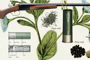 The Flower Shell Bullet Contains Seeds Rather Than Gunpowder